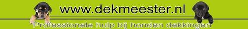 Dekmeester.nl banner klein