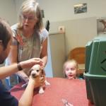 Enting bij dierenarts 2